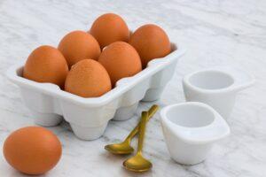 افضل انواع البروتين للعضلات